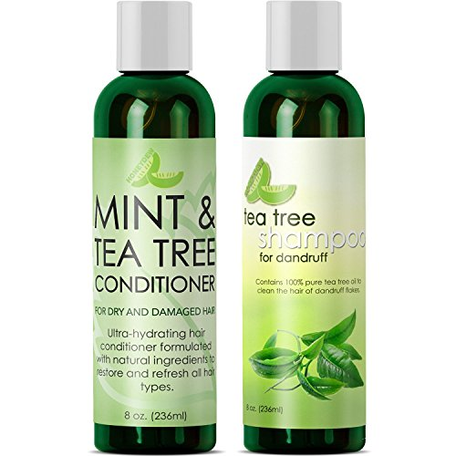 Tea Tree Mint Shampoo and Conditioner - Moisturizing Sulfate Free Shampoo and Conditioner Set for Dry Damaged Hair with Moroccan Argan Oil - Hydrating Shampoo and Conditioner for Damaged Dry Hair Care