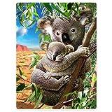 Zomer Kuscheldecke,Koala,125x150cm,Grau,Flauschige Decke Mikrofaser Fleecedecke Weiche und Warme Sofadecke/Couchdecke