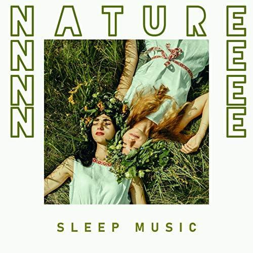 Sleep Ambience, Natural Sleep Aid Music Zone & Trouble Sleeping Music Universe