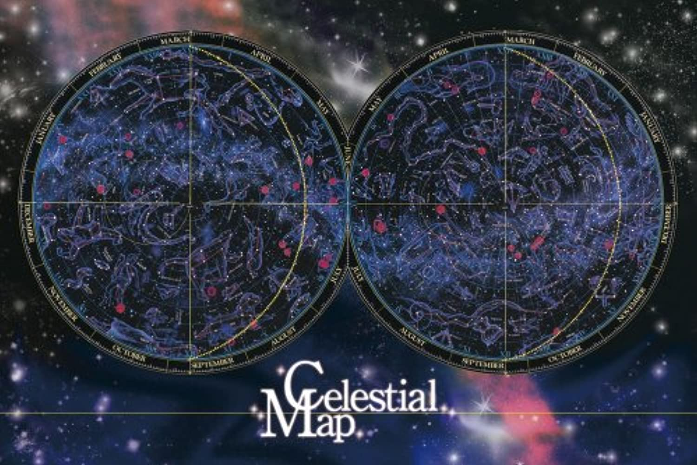 1000 Pisuji Atlas allsky star chart 11351 gurus  Puzzle Aim (japan import)