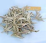 Native Spirit: Weißer Salbei lose 200g Cluster Premium Qualität (White Sage) getrocknet, aus Kalifornien, naturbelassen