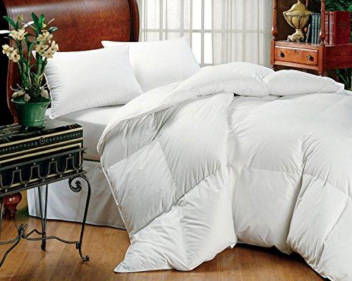 GrayEagle Bedding Co. All Season Down Alternative Comforter...