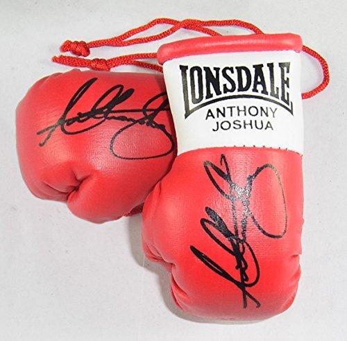 Everlast Anthony Joshua Signiert Mini Boxhandschuhe