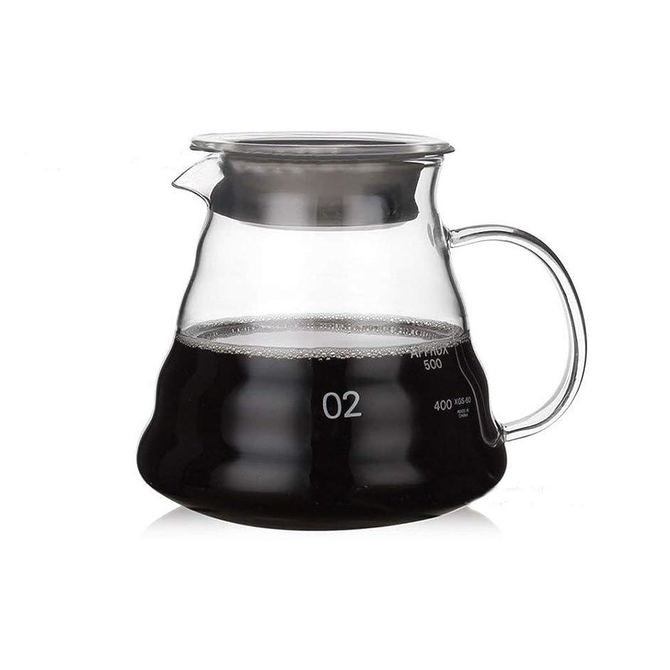 Heat Resistant Glass Hand Drip Coffee Pot Coffee Server Kettle Coffee Maker Teapot (600ML)
