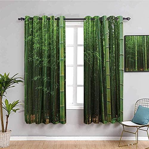 MENGBB Cortina Opaca Microfibra Infantil - Verde planta bambú paisaje - 90% Opaca Cortina aislantes de frío y Calor - 110x140cm Decorativa con Ojales Estilo para Salón Habitación y Dormitorio
