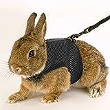 Calunce Soft Rabbits Harness with Elastic Leash (Blue 1pcs)