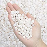2.7 lb Pebbles Polished Gravel-Aquarium Gravel River Rock,Natural Decorative Polished White Stones 3/8' Gravel Size,Small Decorative Pebbles for Plants,Home Decor,Landscaping,Vase Fillers and More.