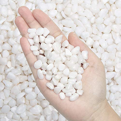 5.7 lb Pebbles Polished Gravel-Aquarium Gravel River Rock,Natural Decorative Polished White Stones 3/8' Gravel Size,Small Decorative Pebbles for Plants,Home Decor,Landscaping,Vase Fillers and More.