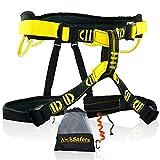 KwikSafety (Charlotte, NC Mandrill Comfort Climbing Harness (Free Tool Lanyard & Carabineer!) Lightweight Padded Adjustable Half Body Waist Belt Heavy Duty 310lb Limit Mountain Rock Tree Arborist
