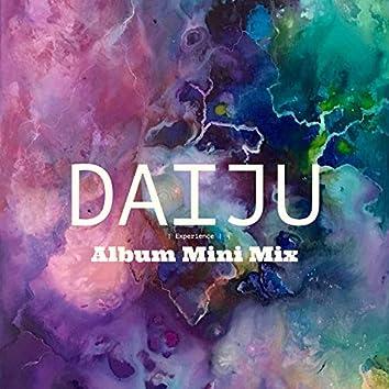 Experience (Album Mini Mix)