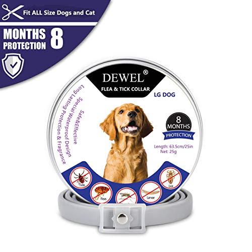 DEWEL -   Hund Zecken