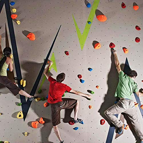 TOPNEW 32 Rock Climbing Holds Multi Size for Kids, Adult Rock Wall Holds Climbing Rock Wall Grips for Indoor and Outdoor Playground Play Set - Includes 2 Inch Mounting Hardware