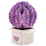 Valentine's Day Lilac Flower Social Distancing Pop Up Box Card With Envelopes,Thinking of you 3D Card, Thanks Healthcare Worker,Lucky Cards (Gift for Women like Girlfriend, Teacher, Nurse, Mother, Grandparent )…