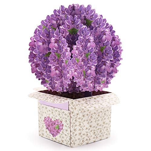 Lilac Flower Pop Up Card Social Distancing Greeting Card Thanks Nurse 3D Card Girlfriend Gift Woman Birthday Greeting Card Grandparents' Day Gift Mother's Day Card Mothers Day