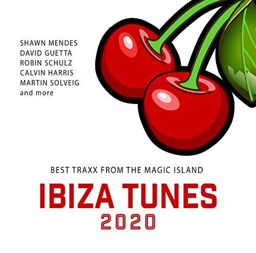 Ibiza Tunes 2020/Best Traxx from the Magic Islan