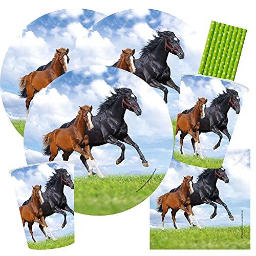 partystrolche/spielum Set di 44 pezzi per feste con cavalli, cavalli e pule; piatti, bicchieri, tovaglioli, cannucce, per 8 bambini