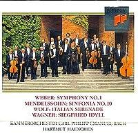 Symphony 1 / Mendels
