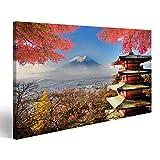 islandburner Bild Bilder auf Leinwand Mt. Fuji mit