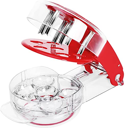 Cherry Pitter Tool Stainless Steel Cherry Remover 6 Cherries at Once Cherry Stoner Seed Pitter with Pit and Juice Container