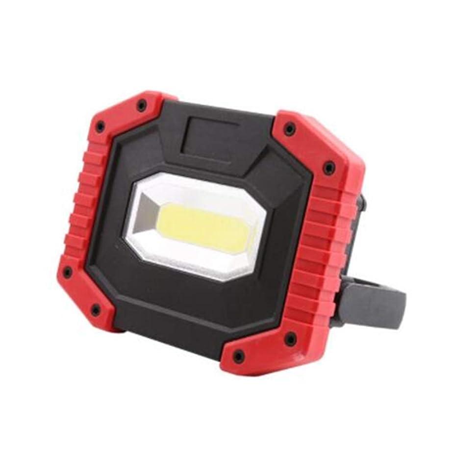 花弁仮定するウッズCAIDI LED投光器 30W LEDライト非常灯 防水集魚灯 看板灯 充電式LED作業灯 防水防塵 地震 防災対策 昼白色 1年保証付き