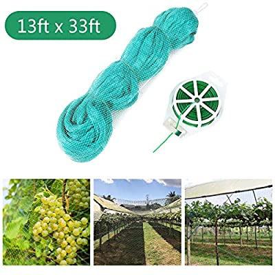 Bldaxn Green Anti Bird Netting Garden Protection Mesh Netting Reusable Protective Garden Netting for Plants Fruit Trees Against Birds,Deer and Other Animals,Netting Fence 13Ft x 33Ft