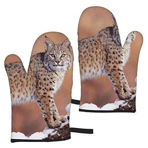 Canada Lynx - Manopla para horno (1 par)