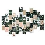 50 Stück Wandcollage Aesthetic Bilder Set, 4 x 6 Zoll