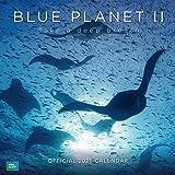 Calendario 2021 30x30 BBC Blue Planet (2021 Calendar)