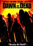 Poster Dawn of The Dead Movie 70 X 45 cm