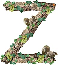 Photography Poster - Alphabet, Letter, Z, Rustic, Timber, 24