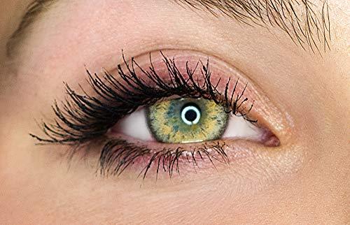 Kontaktlinsen farbig ohne Stärke farbige Jahreslinsen weiche Linsen soft Hydrogel 2 Stück Farblinsen + Linsenbehälter 0.0 Dioptrien natürliche Farben Serie Gleam Hazel (Haselnuss)