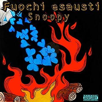 Fuochi Esausti