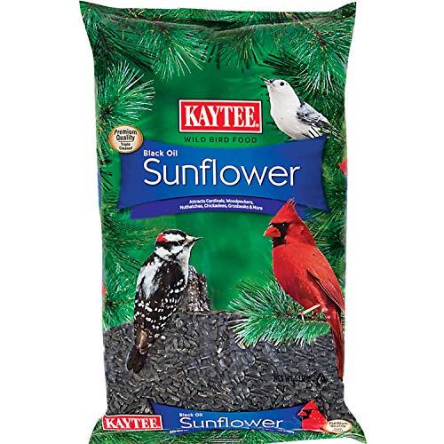 Kaytee Wild Bird Black Oil Sunflower Food, 5 Pounds