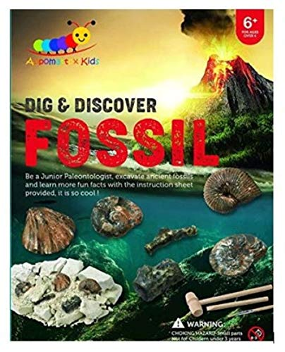 Dig and Discover Fossil Kit, Fossil Digging Kit for Kids, Early Learning STEM Toy, Fun Dig Out Fossil Excavation, Paleontology and Archaeology Science Education, Boys and Girls (Fossil Dig Kit)