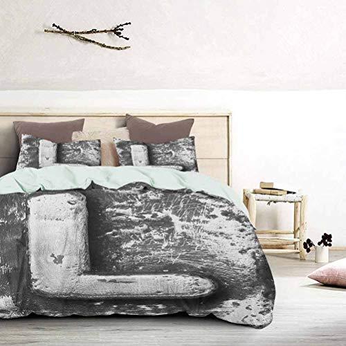 UNOSEKS LANZON - Colcha de cama tipo cubrecama tipo L alfabeto nombre letra barroco caballeros hierro palabras escritura diseño funda de edredón de lujo hipoalergénico estilo moderno gris, tamaño king