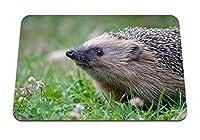 26cmx21cm マウスパッド (ハリネズミのとげ) パターンカスタムの マウスパッド