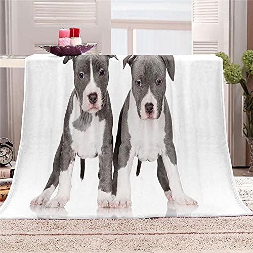 Mantas para Cama de Franela 150x200cm Manta Polar 100% Microfibra Extra Suave Manta de bebé Cálido Saludables y Duraderas también Puede para Mascotas - Lindo Cachorro