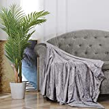 BOURINA Throw Blanket Shiny Decorative Ice Crushed Velvet Throw for Sofa Bed Polyester,50'x60' Grey