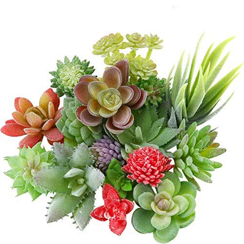 WILLBOND 18 Stück Künstliche Beflockte Pflanzen Kunststoff Sukkulente Ungetopfte Verschiedene Realistische Pflanzen Gefälschte Strukturierte Sukkulenten-Picks für Faus Landschaft Dekorationen