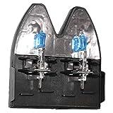 Bombilla Para Faros Delanteros H1 12V 100W, Super Blanco Lámpara Halógena 5200K (H1)
