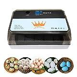 Mini Incubadora de Huevos Para Incubar 15 Huevos Incubadoras de Huevos Automaticas de Temperatura Para Pollos, Patos, Pájaros (azul)