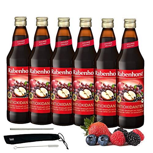 Rabenhorst Saft Antioxidantien 6x 700ml Vegan Bio-Mehrfruchtsaft - Fruchtgehalt: 100% zum Schutz der Zellen vor oxidativem Stress - mit Vitamin C PLUS fooodz-Trinkhalm Set mit Reinigungsbürste