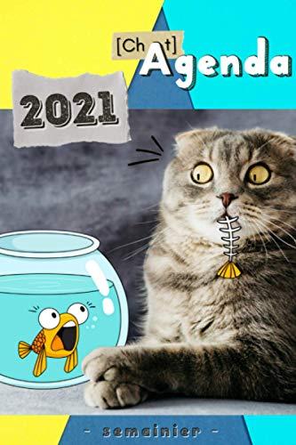 Agenda Chat 2021: Semainier - Vue semaine sur une Double Page - Orientation Verticale - Rigolo - Calendrier - RDV - Priorités - Évènements - Notes - Aperçu bi-mensuel - Chat Doodle Humoristique