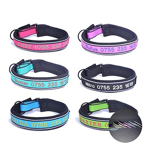dytinine Reflektierende personalisierte Hundehalsband, benutzerdefinierte bestickte Halsbänder mit Pet Name & Geburtstag & Telefonnummer-4 einstellbare Größen, 5 Farben Pet Collar