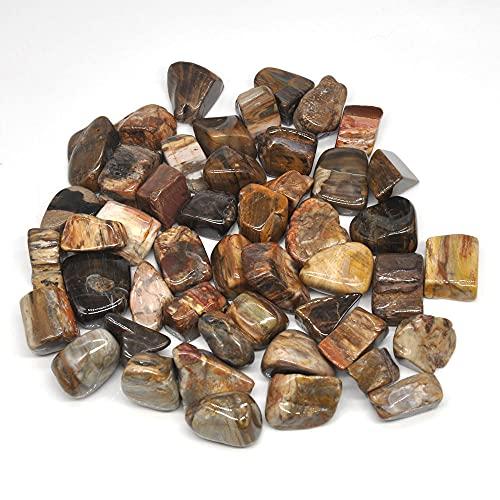 100g naturale stromatolite fossile pietre cadutecristallisfusiReiki pietre preziose lucidate gemma decorazione acquario grezzo