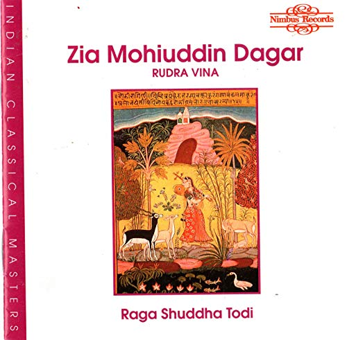Rudra Vina/Indische Musik