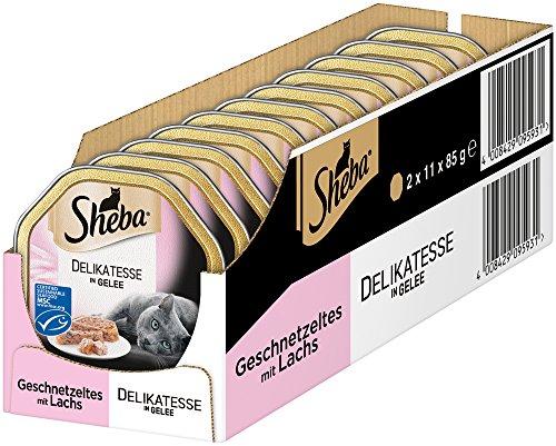 Sheba Delicatesse en Jalea, alimento húmedo para Gatos, salmón, en el práctico Recipiente, 22 x 85 g de alimento Completo