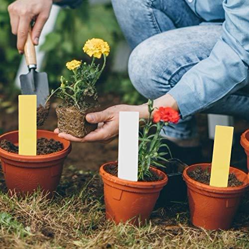 Alinory 100 pcs PVC Usine Pot De Fleur Pot Tags Marqueurs Pépinière Jardin Signe De Graine Étiquettes Facile à Coller(Blanc + Jaune)