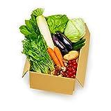 岡山県産限定 新鮮 産直野菜たっぷりセット(野菜11品目)【お届け日指定可能♪】