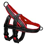 Beirui No Pull Escape Proof Dog Harness for Small Medium Large Dogs - Soft Padded Reflective Medium Dog Walking Harnesses (Black,M)